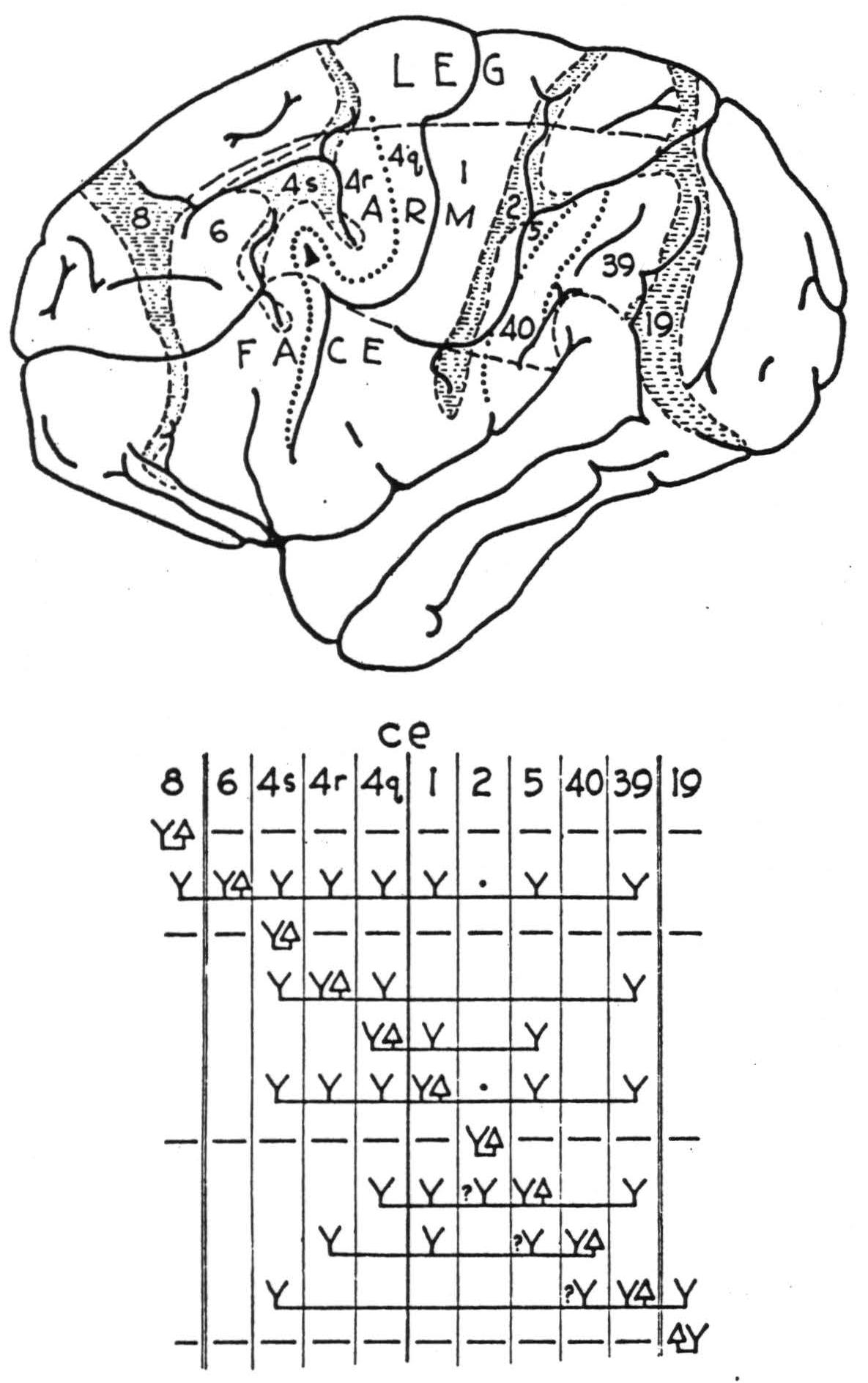 Figure 91b